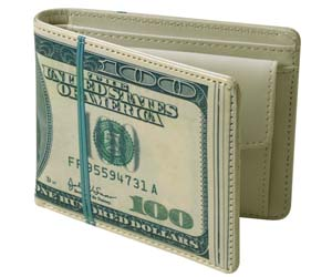 cartera fajo dólares