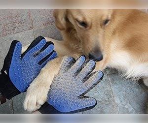 guantes_masaje_perro_quita_pelos