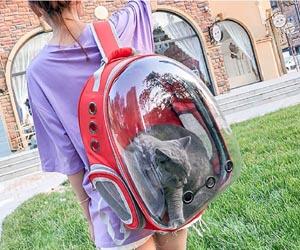 Mochila Transparente Mascota