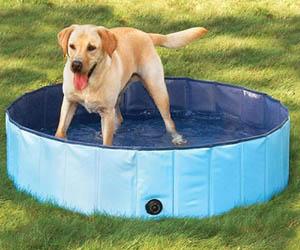 Bañera Perros Grandes Plegable